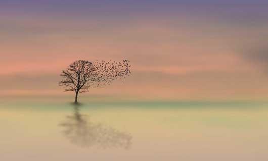 Meditation und Atemtechniken