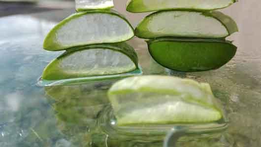 Aloe Vera Gel zur Hautpflege